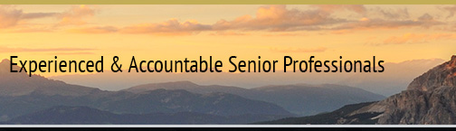 Experienced and Accountable Senior Professionals